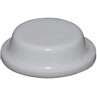 TOOLCRAFT PD2125W Ayak kendinden yapışkanlı, dairesel Beyaz (Ø x H) 12,7 mm x 3,5 mm 1 adet(ler)