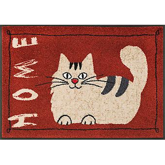 wash + dry mat 50 x 75 cm catty home washable floor mat