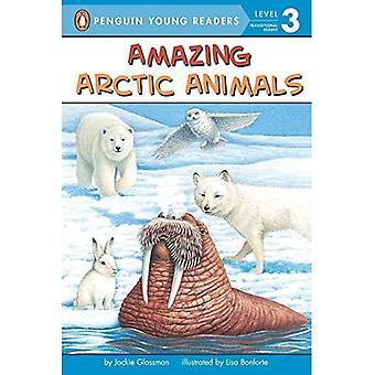 Fantastiska arktiska djur (alla ombord vetenskap läsare: nivå 2)