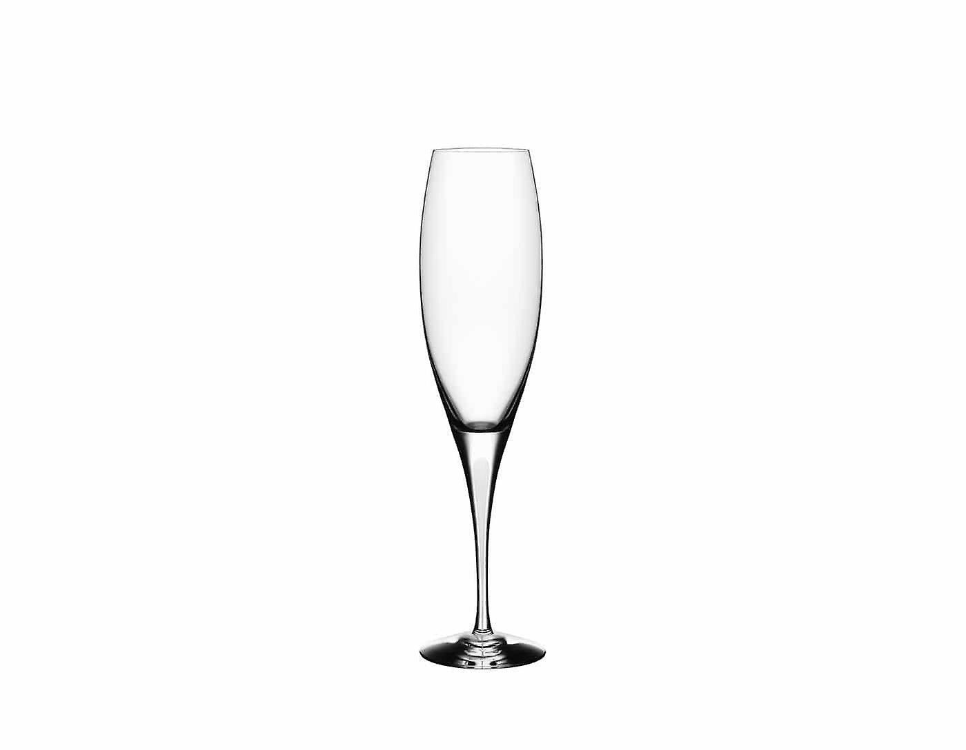 Orrefors-Intermezzo Satin 6 pcs champagne glass Design Erika Lagerbielke