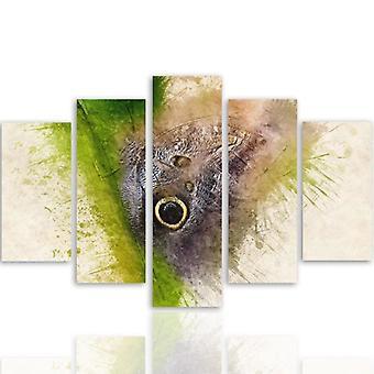 Vijf deel foto op canvas, Pentaptych, type A, vlinder 1