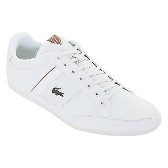 Lacoste heren 2019 leren sneakers Chaymon
