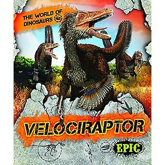 Velociraptor by Rebecca Sabelko - 9781644870914 Book