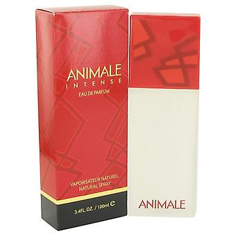 Animale Intense Eau De Parfum Spray By Animale 3.4 oz Eau De Parfum Spray