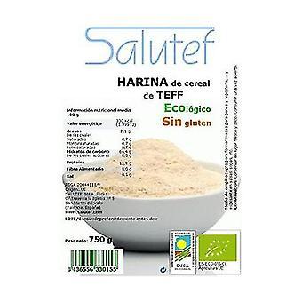 Teff flour ECO 750 g of powder