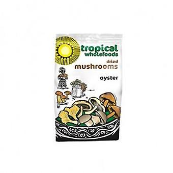 Tropical Wholefoods - Oyster Mushrooms