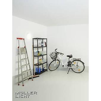 StarLicht Bulkhead LED natte ruimte licht LED (monochroom) Ingebouwde LED 8 W Koel wit Wit