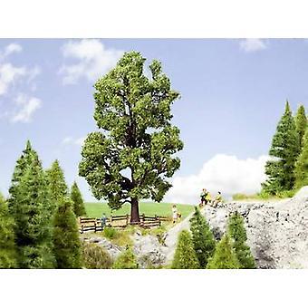 NOCH 0021802 Tree Chestnut tree 185 mm 1 pc(s)