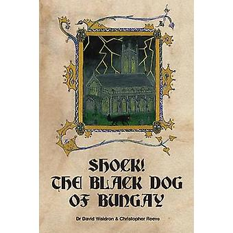 Shock the Black Dog of Bungay by Waldron & David
