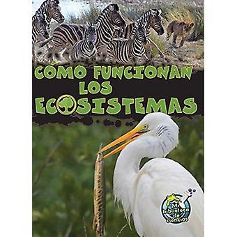 Como Funcionan Los Ecosistemas (How Ecosystems Work) by Julie K Lundg