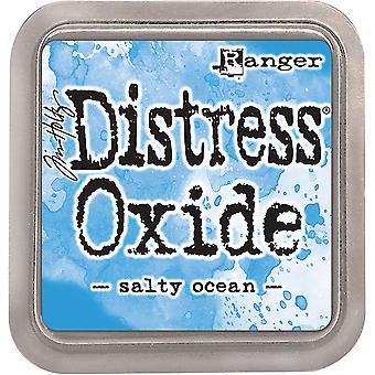 ティムホルツ遭難酸化物インクパッド - 塩水海