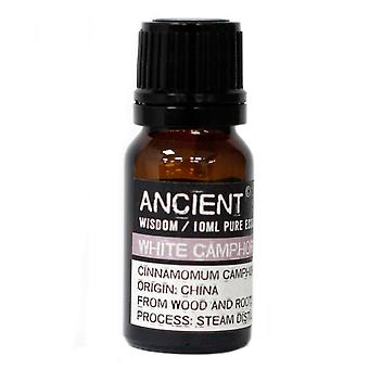 White Camphor Essential Oil 10ml