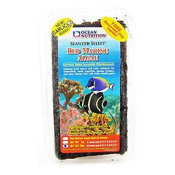 Oceánská výživa Červené mořské řasy - velké (20 gramů)