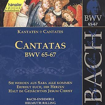 J.S. Bach - Bach: Cantatas, Bwv 65-67 [CD] USA import