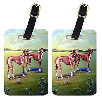 Carolines Treasures  7001BT Pair of 2 Azawakh Hound Luggage Tags