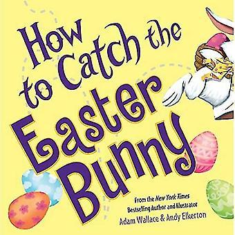 Comment faire pour attraper le lapin de Pâques