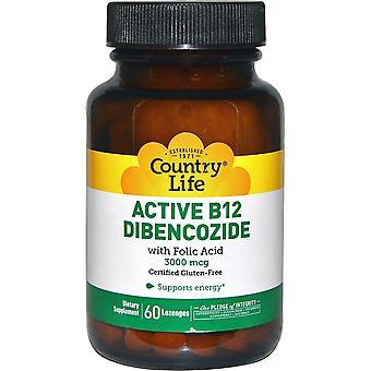 Vita di campagna, Active B12 Dibencozide, 3000 mcg, 60 Lozenges