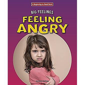 Feeling Angry by Mary Lindeen