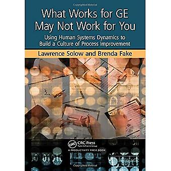What Works for GE May Not Work for You: Using Human Systems Dynamics to Build a Culture of Process Improvement