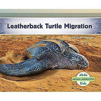 Leatherback Turtle Migration� (Animal Migration)