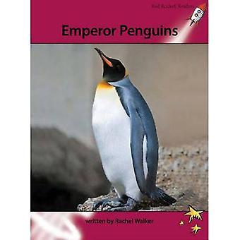 Emperor Penguins by Rachel Walker - 9781877506802 Book