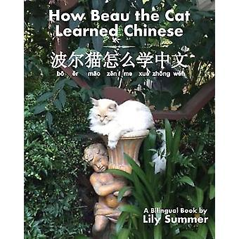 How Beau the Cat Learned Chinese by Summer & Lily