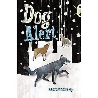 Bug Club Dog Alert (grey A / NC 3A)