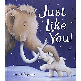 Just Like You! by Jane Chapman - 9781848699335 Book
