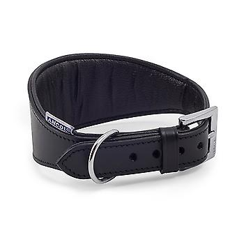 Ancol Pet Products Heritage Buckle Fasten Padded Greyhound Collar