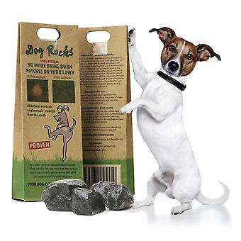Dog Rocks Lawn Burn Supplement, stop pet urine ruining your lawn, 1 pack, 200g