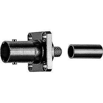 Teleg-rtner J01001A0080 Conector BNC Socket, incorporado 50 x 1 ud(s)