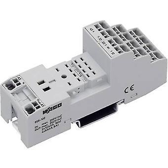 WAGO 858-100 Relais aansluiting (L x b x H) 97 x 31 x 39 mm 1 PC (s)