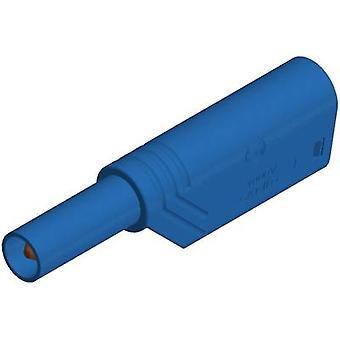 SKS Hirschmann LAS S G prosto tarczy bezpieczeństwa wtyczkę, prosto średnica sworznia: 4 mm niebieski 1 szt.