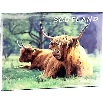 Highlanders at Glen Nevis Magnet by Lyrical Scotland