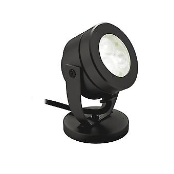 Firstlight Showcase Black Surface LED Pond Spotlight