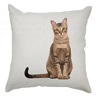 Animal Cushion Cover 40cm x 40cm Tabby Cat