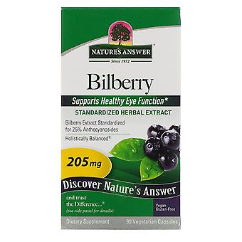Nature's Answer, Bilberry, Standardized Herbal Extract, 205 mg, 90 Vegetarian Ca