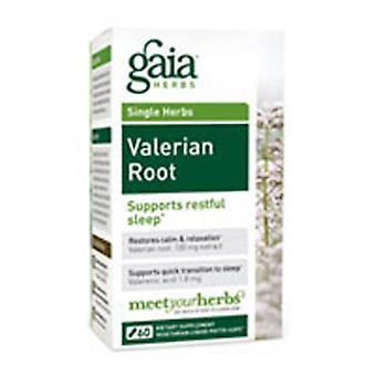 Gaia Herbs Valerian Root, 60 korkkia