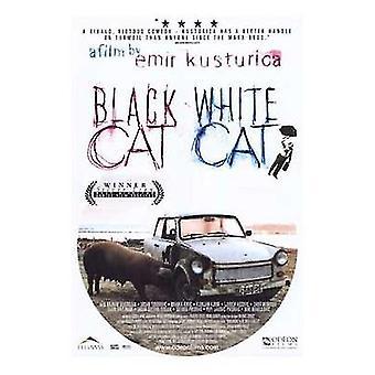 黒猫白猫映画ポスター (11 x 17)