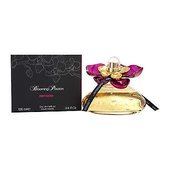 Penthouse Blooming Passion Eau de Parfum 100ml Spray