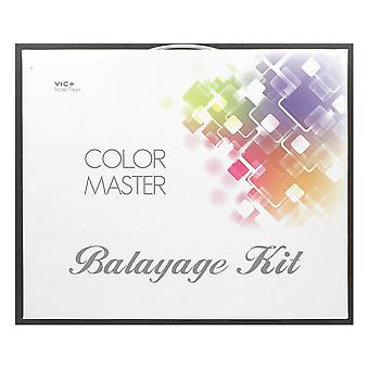 Agenda Salon Concepts Colour Master Balayage Kit