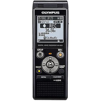 Olympus Digital Voice Recorder 8GB with Built-in USB plus Micro SD Slot - Silver