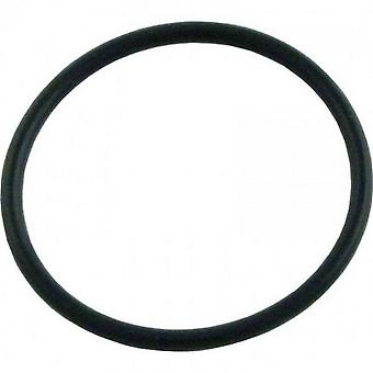Hayward AX5010G19 In-Line Filter O-Ring for Pool Cleaner