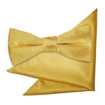 Gold Plain Satiini rusetti & taskussa neliön sarja pojat