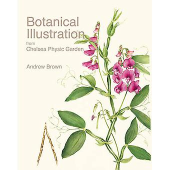 Botanical Illustration from Chelsea Physic Garden by Andrew Brown - C
