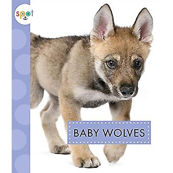 Baby Wolves by K C Kelley - 9781681513171 Book
