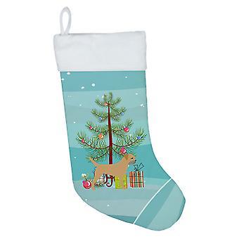 Borderterrieri hyvää joulua puu joulu sukat
