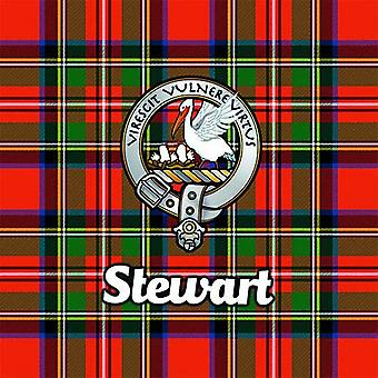 Art2Glass Tartan Clan Coaster - Stewart