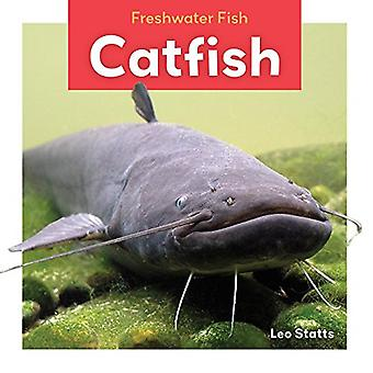 Catfish (Freshwater Fish)