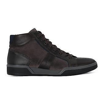 IGI&CO 41318 universal todos os anos sapatos masculinos